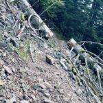 Un pierrer dans les Vosges !?